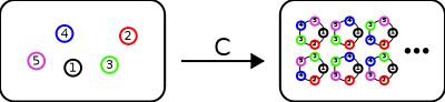 The species C of cycles